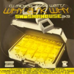 Cover of Why Ask Why 2 by Swishahouse